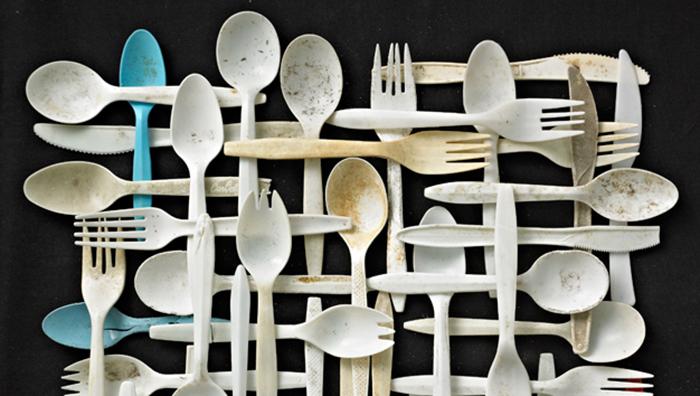 GREEN WISH – mieux appréhender le plastique