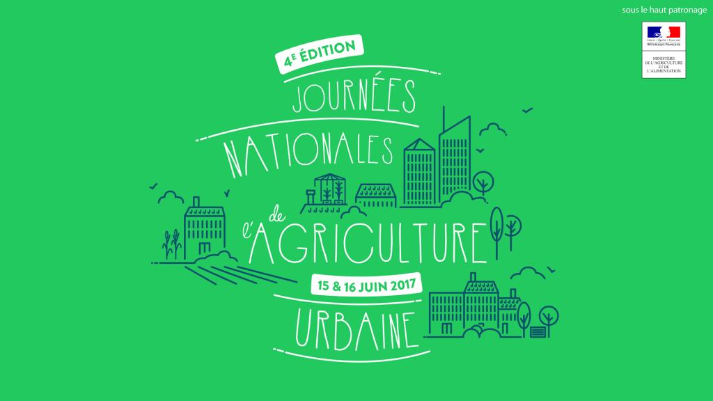 agriculture_urbaine