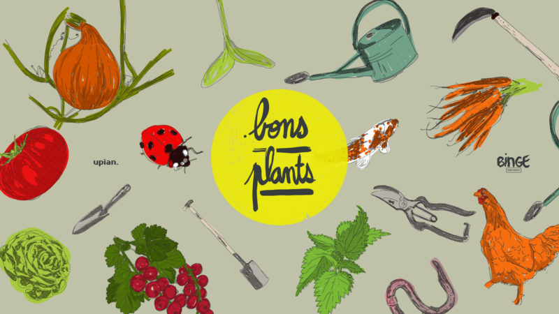 Podcast crush : Bons Plants